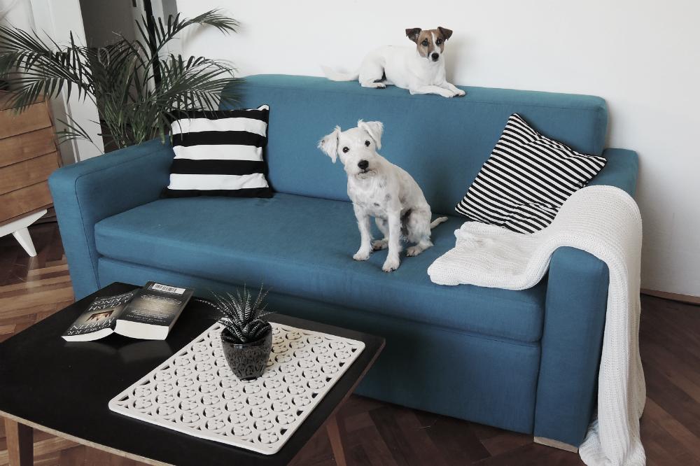sofa after 28