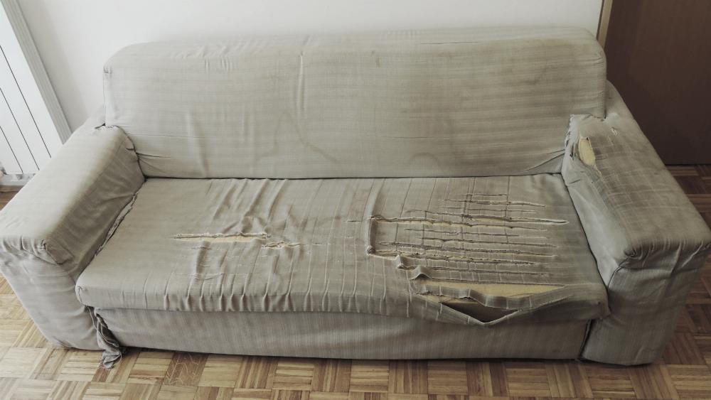 sofa before 2