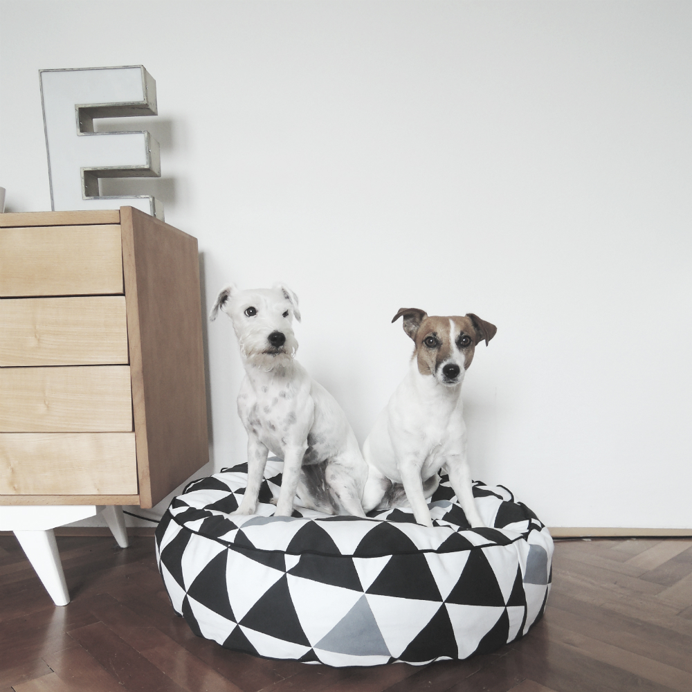 dog bed 19