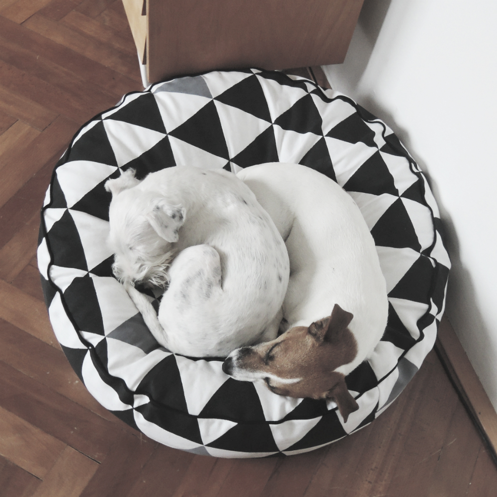 dog bed 22