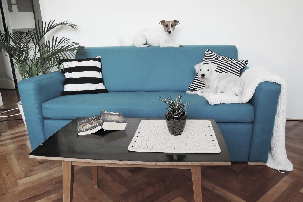 sofa after 27