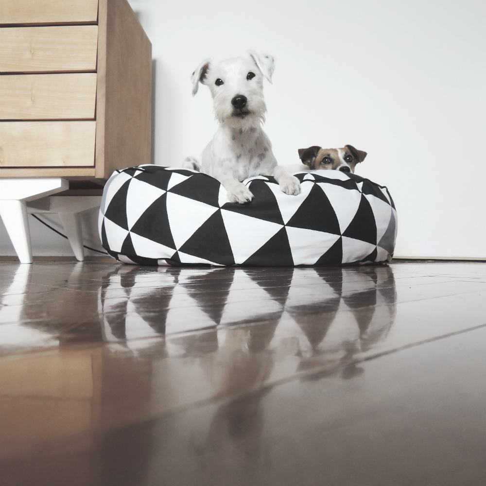 dog bed 21
